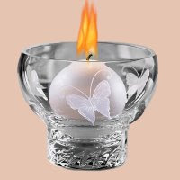 Butterfly Flame