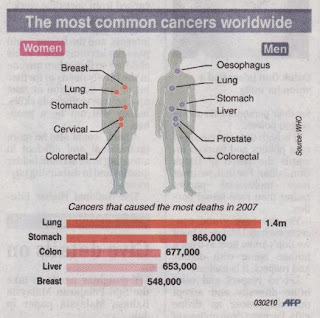 The most common cancers worldwide