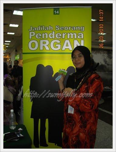 derma organ