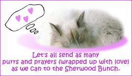 Sending purrs and luv to all the Sherwoods