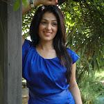 Don Seenu second heroine Anjana Sukhani latest stills gallery at don seenu success meet