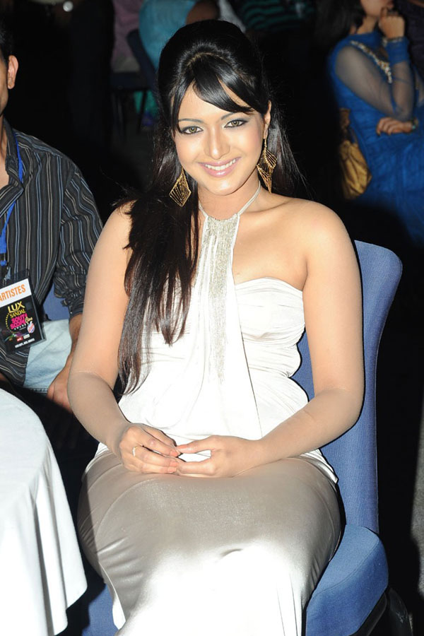 Celebrity Hot Actresses At South Scope CineAwards 2010