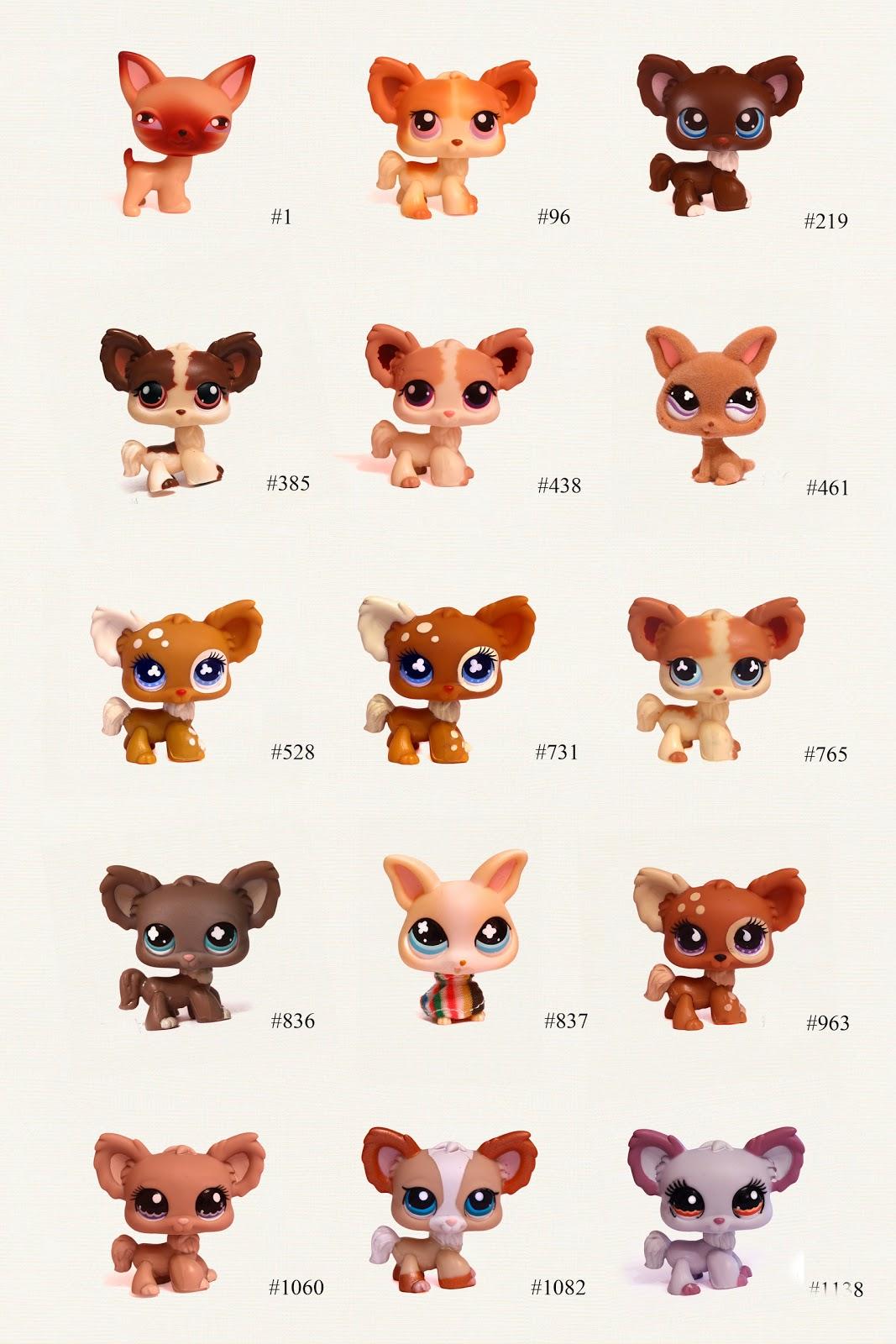 LPs Chihuahua