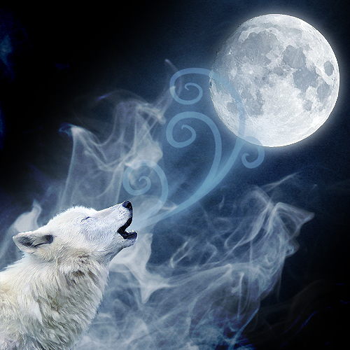 Marsha A. Moore: Magical Monday: Howl at the Wolf Moon