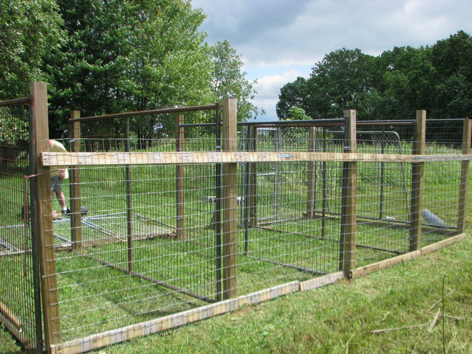 outdoor dog kennel flooring ideas | rumahblog wallpaper