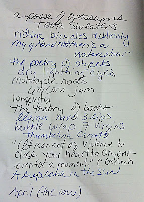 Heidi's Notebook