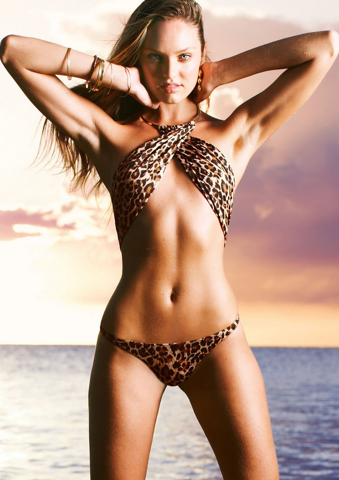 Candice Swanepoel (VS Swimsuit 2010)