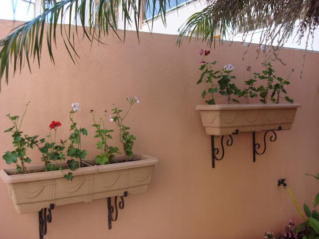 floreira com geranios