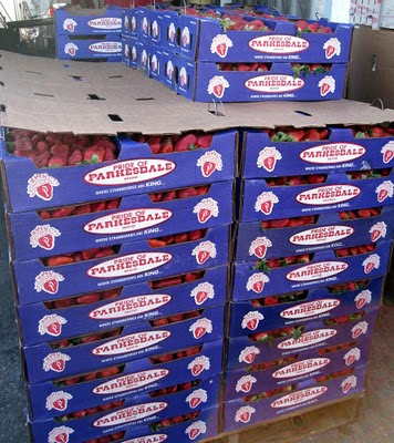 A pallet of Stawberries