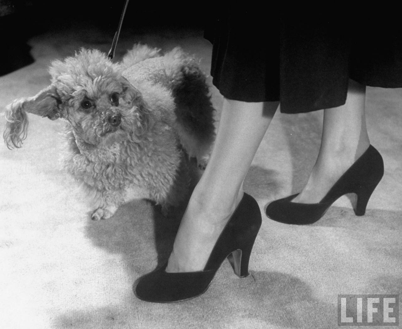 1930 S Fashion Womens Shoe Styles Glamourdaze
