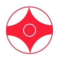 Budo Karate Club: 2011