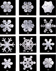 "Wilson Bentley, ""Snowflakes"" (1902)"
