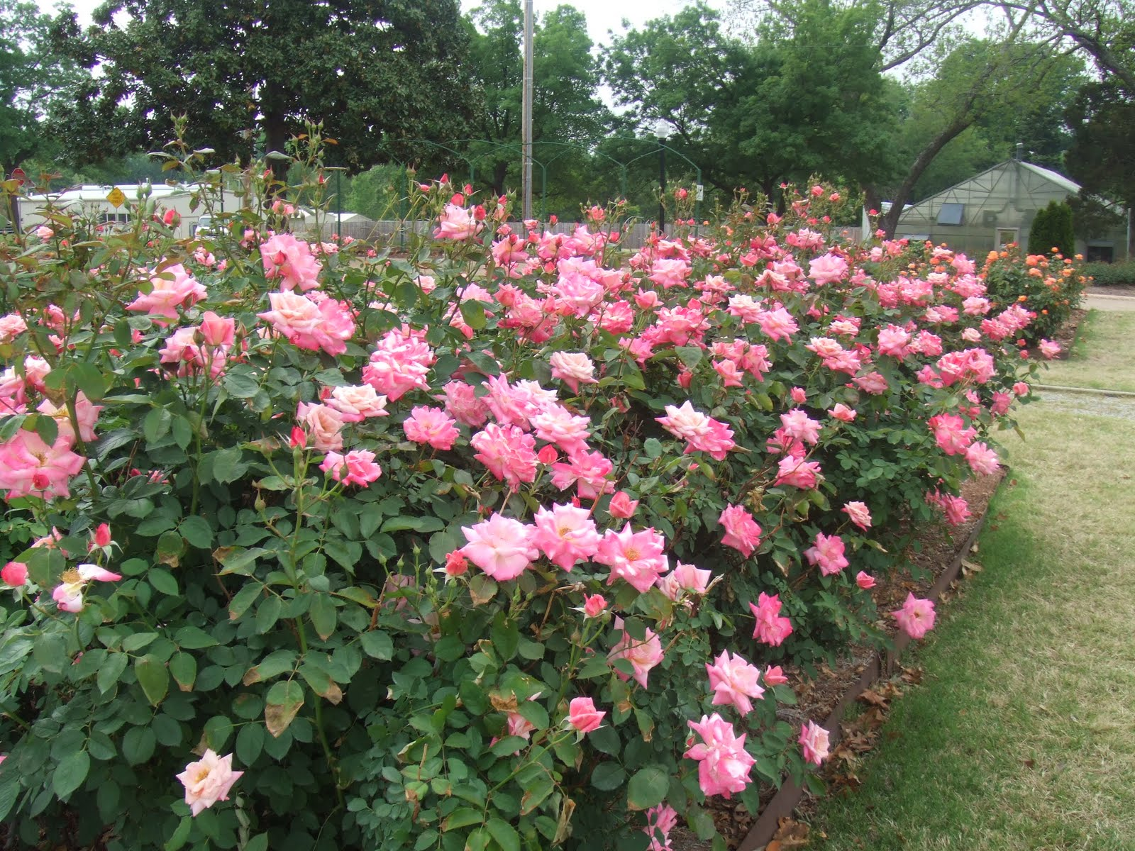 Adjacent To The Garden Center Is Extraordinary Tulsa Rose Munil Was Constructed With Hand Labor And Teams Of Horses As