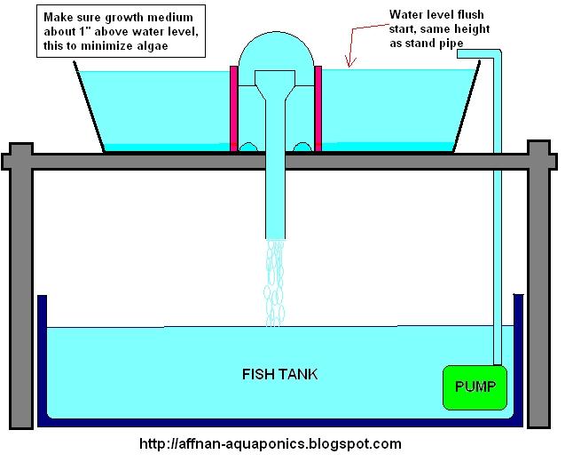 Aquaponics Bell Siphon Diagram Aquaponics Design Garden