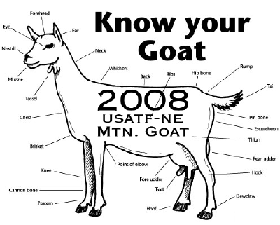 w a n d e r s u r f a c e: 2008 Mountain Goat (on a stick?)