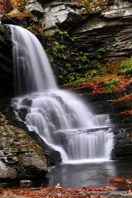 Yaprak Soysal Photography Bushkill Falls