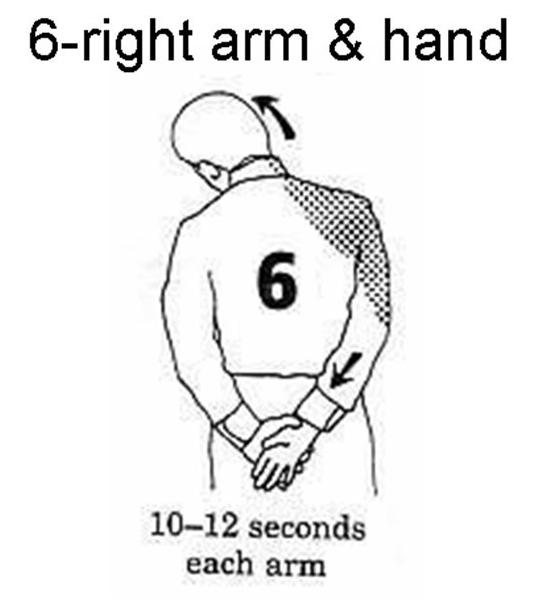CoolFunClub: Office Exercise for 4 Minutes