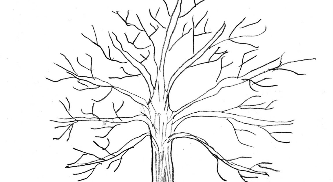 Getting To Know God Being Oaks Of Righteousness