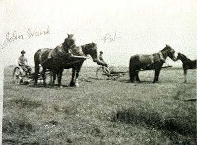 Literrata Walsh Home Ranch Early Photos 1920