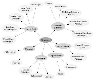 Specified Life: Specifying a classification with GraphViz