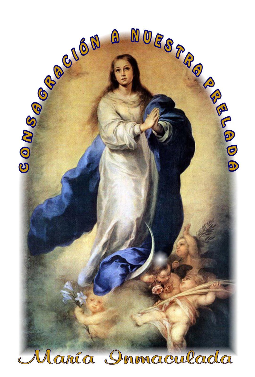 Nuestra Vida Es Cristo Diciembre 2010