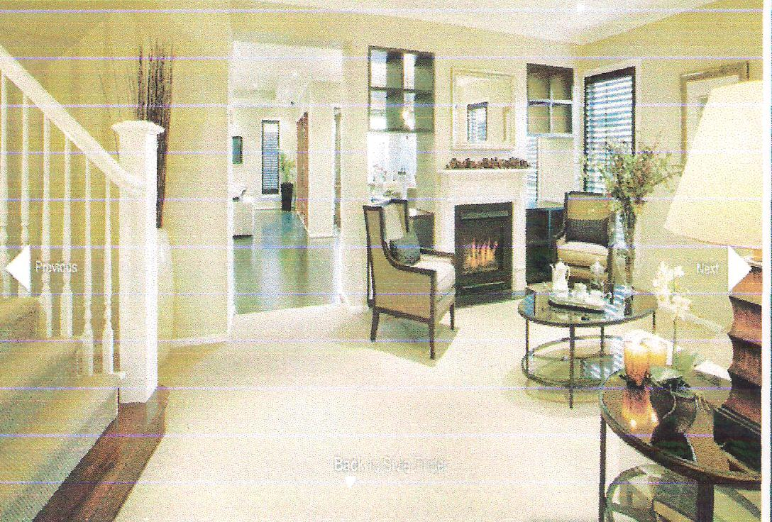 2 WAY GAS FIREPLACE  Fireplaces