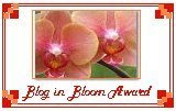 Blog In Bloom