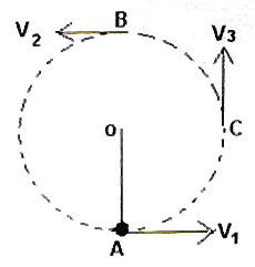AP Physics Resources: January 2008