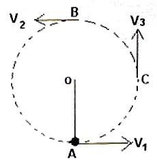 AP Physics Resources: AP Physics B and C- Free-response