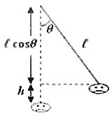 AP Physics Resources: AP Physics B & C- Work, Energy