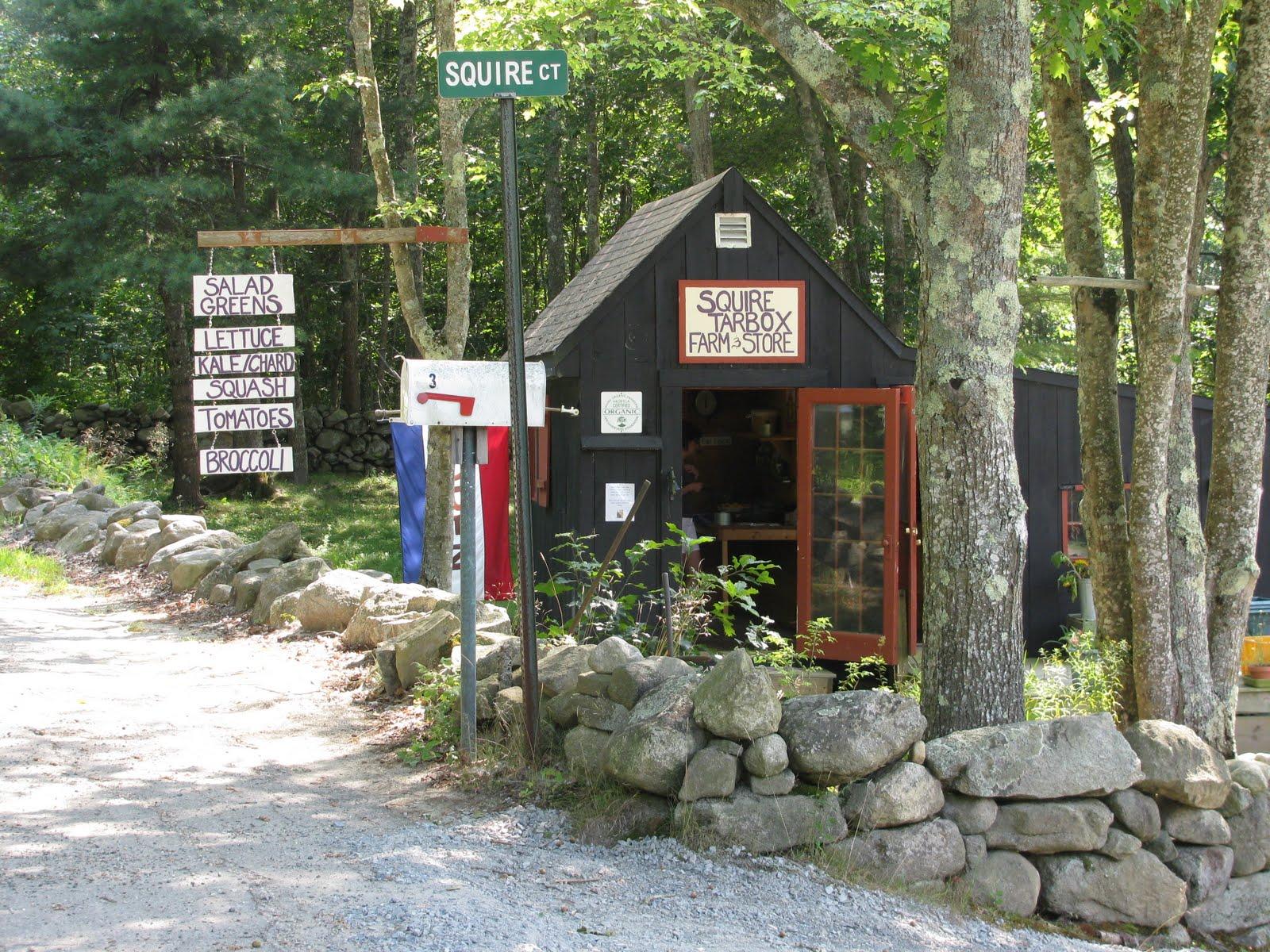 841 Main Rd, Westport Island, ME 04578 | Zillow |Westport Island Maine