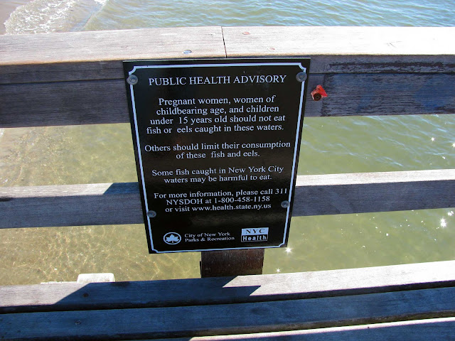 Water-Quality-at-Coney-Island