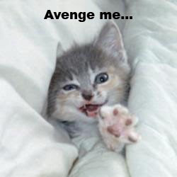 photo of a cat sinking in pillows and caption says...avenge me