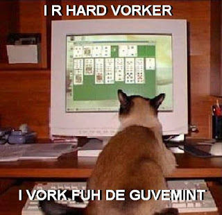 photo of a cat sitting at a computer and paying solitaire.