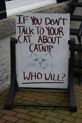 talk to your cat about catnip sign