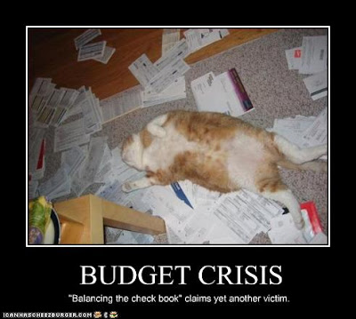 photo of exhausted cat after balancing checkbook