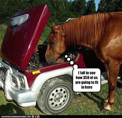 photo of a horse looking at a car engine