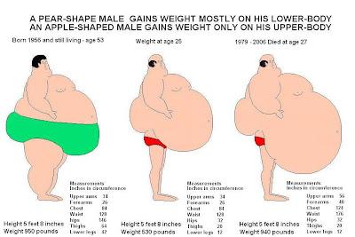Fat Lower Body 29