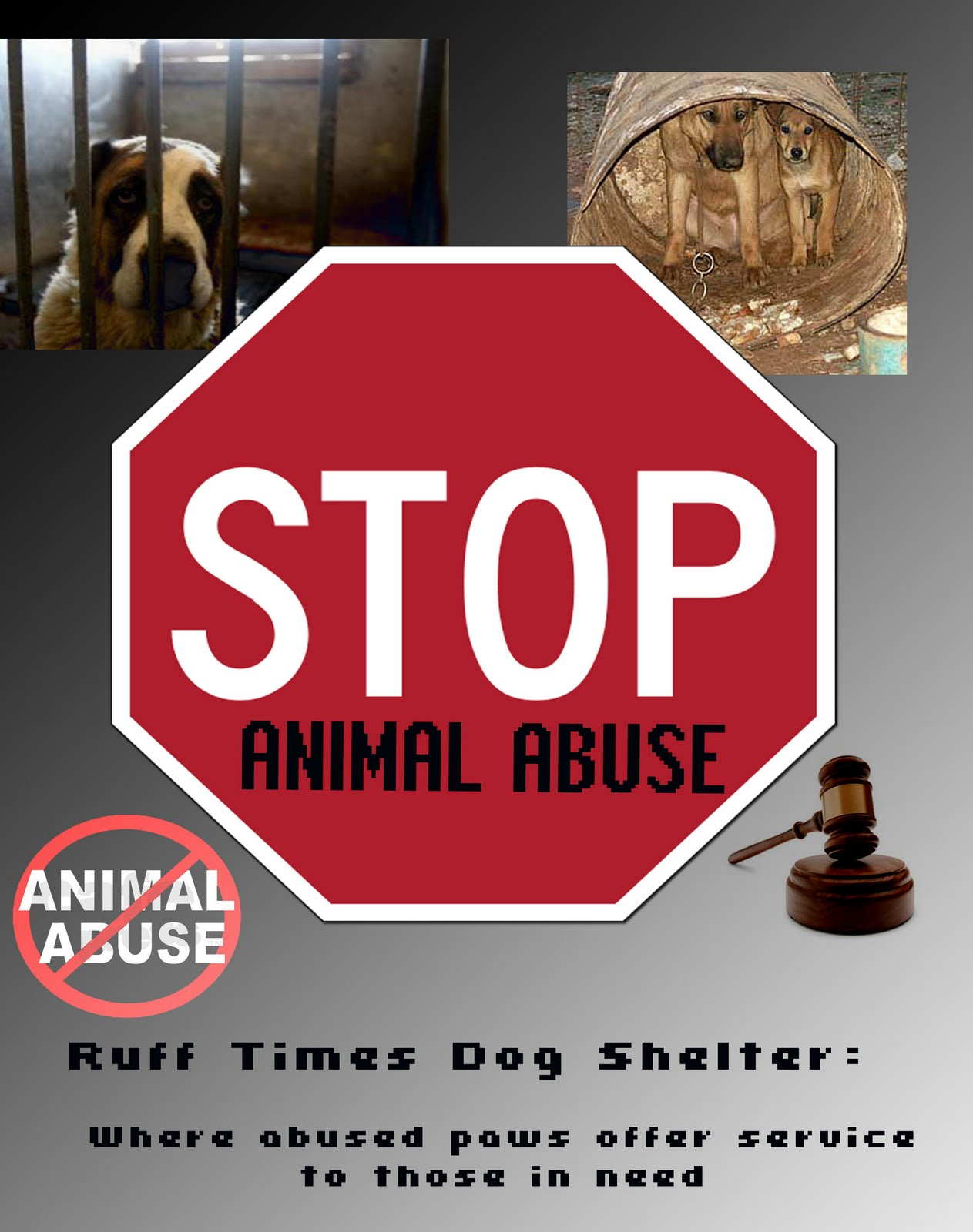 animal abuse posters ideas - photo #2