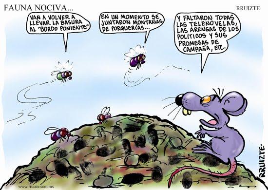 FAUNA NOCIVA Y TRANSMISORA PDF DOWNLOAD