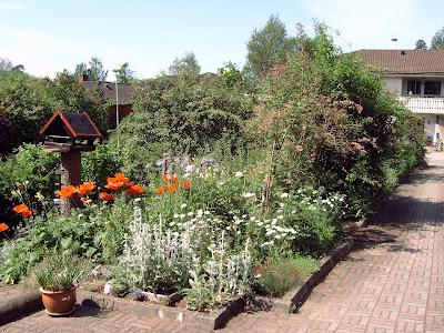 blomsterbed inntil hus