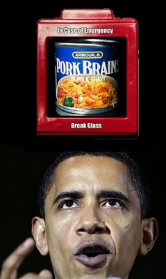 Obama emergency pork