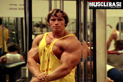 7th Time Mr  Olympia Arnold Schwarzenegger - Muscle Base