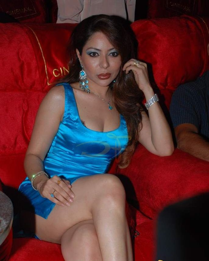 celebrity hot picture busty masala actress laila khan