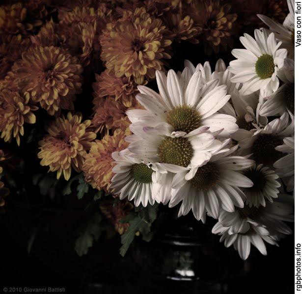 Fotografia di settembrine e margherite in un vaso