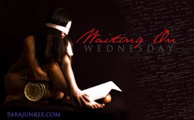 Waiting on Wednesday: Dreams of a Dark Warrior
