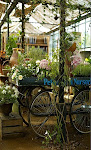 Fabulous Shops