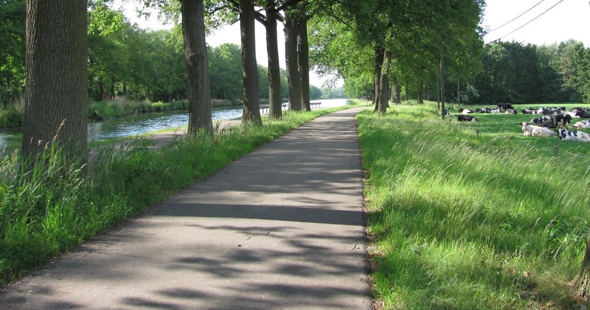 Q Shoes Canal Walk