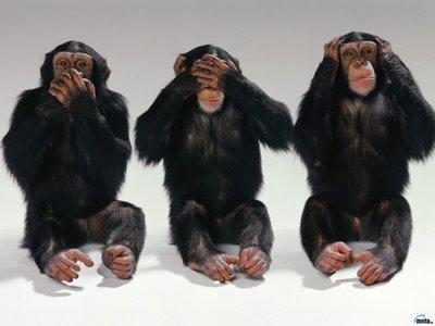http://3.bp.blogspot.com/_mT7P-0Y-0co/TNqelAiKm8I/AAAAAAAAAQc/1w-0Zd4S0uo/s1600/Chimpances%2BMUDO%252C%2BCIEGO%2BY%2BSORDO..jpg