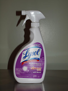 April Knows Best Lysol Brand Mold Amp Mildew Remover